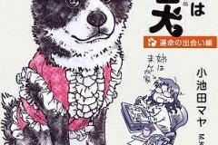 「いもうとは秋田犬」書影