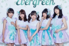 【Clef Leaf】Evergreen_Type-A_websize